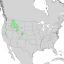 Salix geyeriana range map 1.png