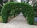 San Anton Attard Gardens 12.jpg