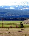 Sandhill Cranes-Mt Adams - Conboy Lake NWR.jpg