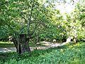 Sanguineta-Paesaggio 12.jpg