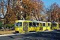 Sarajevo Tram-291 Line-3 2011-10-06.jpg