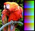 Screen color test MSX2 Screen8.png