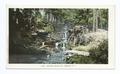 Seaton Falls, Mt. Vernon, N. Y (NYPL b12647398-66691).tiff