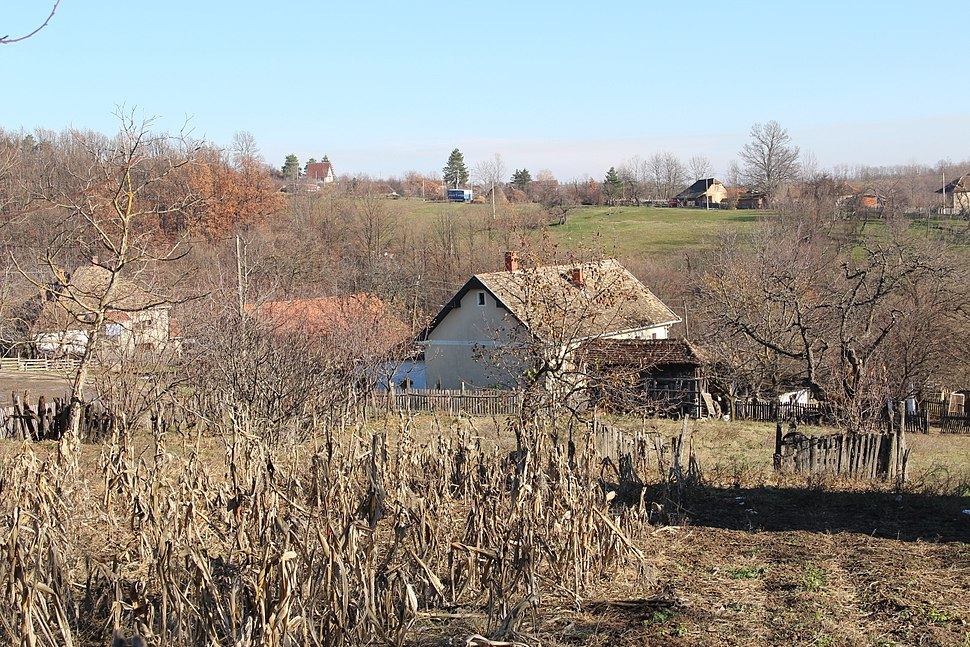 Selo Gola Glava - opština Valjevo - zapadna Srbija - panorama 11