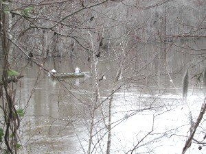 Pee Dee River - Shad fishing in February,