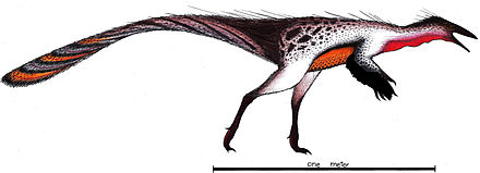 Shenzhousaurus