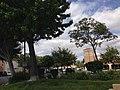 Simi Valley, CA, USA - panoramio (18).jpg