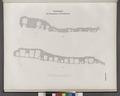 Situationsplan der Felsengräber von Benihassan (Banî .Hasan Site) (NYPL b14291191-37561).tiff