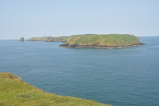 Skomer from Martin's Haven (7101)