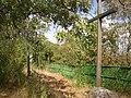 Slanska hora CZ trail stop 03 098.jpg