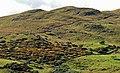 Slievenisky near Dromara - geograph.org.uk - 1463497.jpg