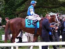 Smarty Jones Belmont 2004.jpg