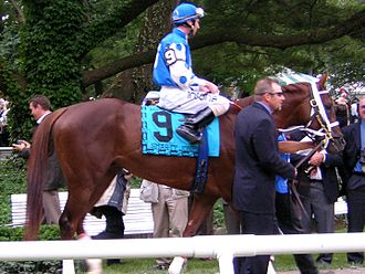 Smarty Jones - Smarty Jones at the 2004 Belmont Stakes