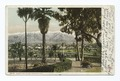 Snow and Palms, Pasadena, Calif (NYPL b12647398-62306).tiff