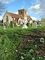 Snowdrops by St Michael's Church, Oulton, Suffolk - geograph-3850768.jpg