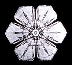 Snowflake12.png