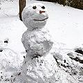 Snowman strawberries carrot sticks.jpg