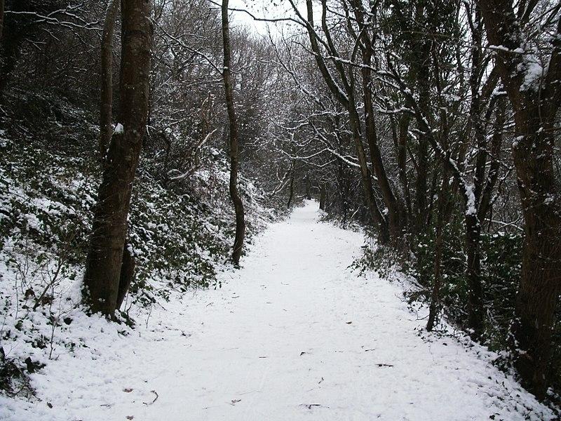 File:Snowy Path Willsbridge 2010.jpg