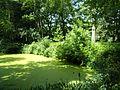 Sola-Bona-Park Teich (4).jpg