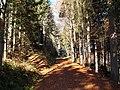 Sommerlicher Herbst Herrenstuhl - panoramio (24).jpg