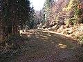 Sommerlicher Herbst Herrenstuhl - panoramio (25).jpg