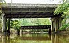 Springfield Ave Bridge 20110930-jag9889.jpg