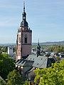 St. Peter und Paul vom Burgturm Eltville.jpg