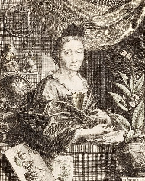File:St presse merian houbraken portrait-merian 1717.jpg