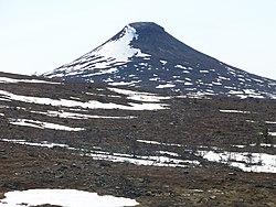 Fran skogsmulle till naturskovling 2