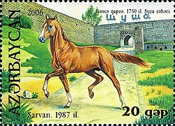 Stamps of Azerbaijan, 2006-751.jpg