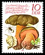 Stamps of Germany (DDR) 1980, MiNr 2552.jpg