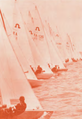Start at the 1978-79 Australian Soling Championship.png
