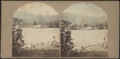 Steamboat landing at Ticonderoga, from Robert N. Dennis collection of stereoscopic views.png