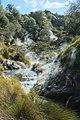 Steaming Waimangu Stream (Waimangu Volcanic Valley).jpg