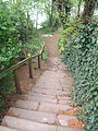 Steps on riverside walk - geograph.org.uk - 412389.jpg