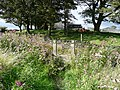 Stile into lane behind High Royds Farm - geograph.org.uk - 947722.jpg