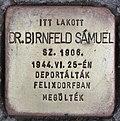Stolperstein für Dr. Samuel Birnfeld (Szeged).jpg