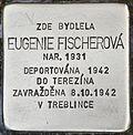 Stolperstein für Eugenie Fischerova.jpg