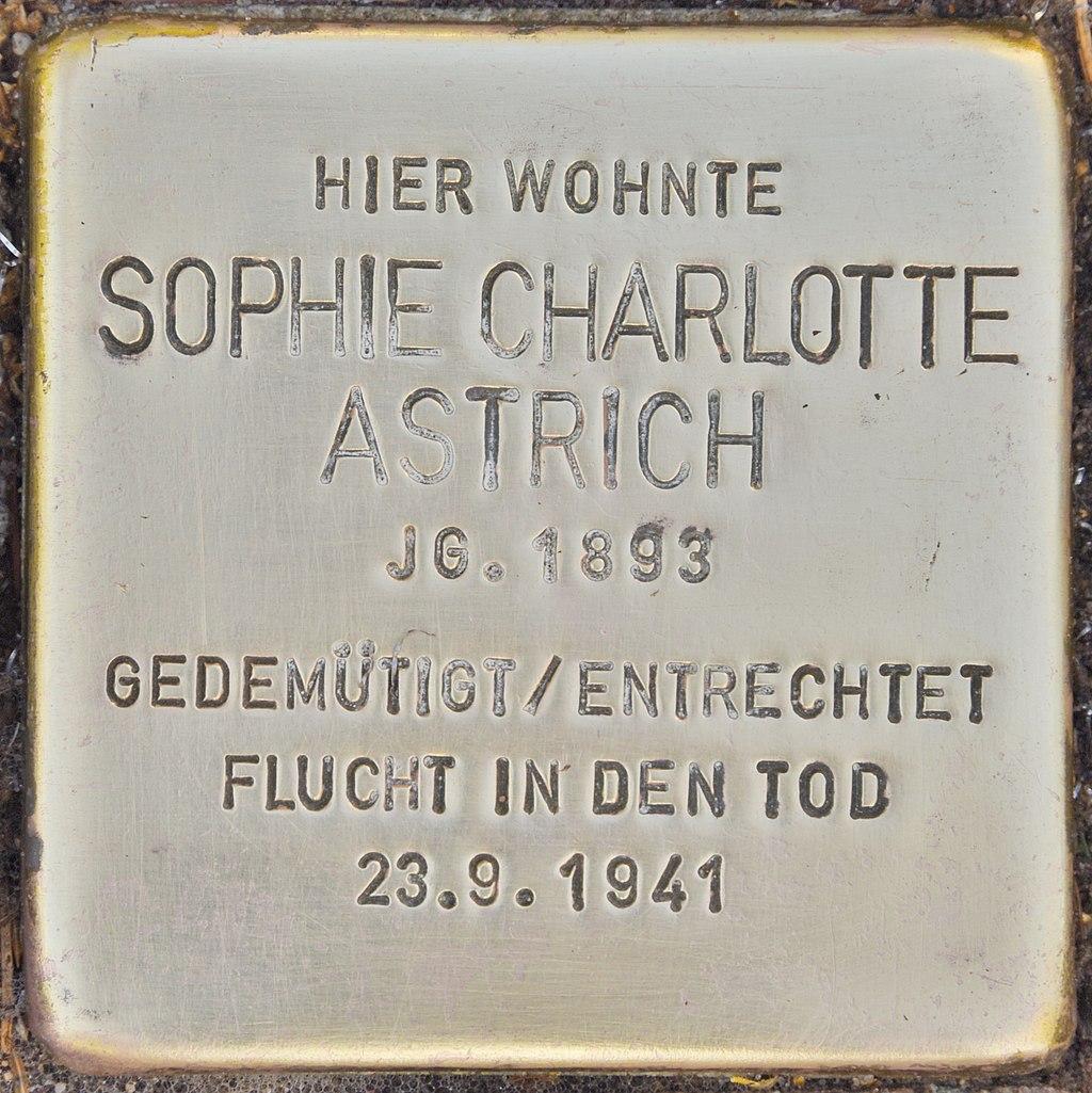 Stolperstein für Sophie Charlotte Astrich (Lübben).jpg