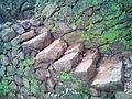 Stone steps, kerala.jpg