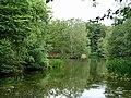 Strawberry Hill Pond - geograph.org.uk - 2477504.jpg