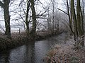 Stream and woods - geograph.org.uk - 1122871.jpg