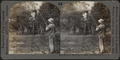 Summer spraying in apple orchard, Hilton, N.Y, by Keystone View Company.png