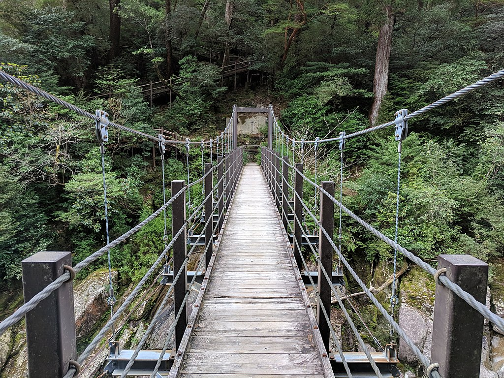 Suspension footbridge in Yakusugi Land