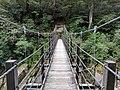 Suspension footbridge in Yakusugi Land.jpg