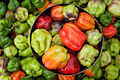 Sweet Pepper Market.jpg
