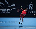 Sydney International Tennis ATP 250 (46000970145).jpg