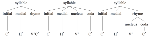 Syllable initial medial rhyme.png