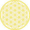 Symbol Blume des Lebens.jpg