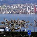 Thalwil, Тальвиль, Швейцария - panoramio.jpg